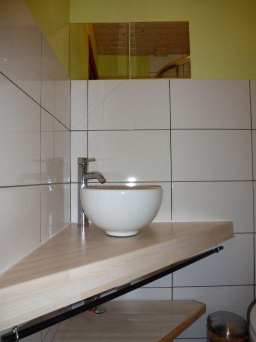 L'Indigo:  la salle de bain ( 1 lavabo et 1 douche)