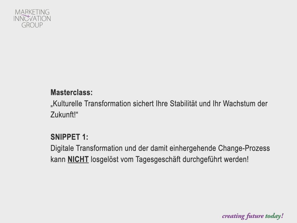 "Snippet 1 Masterclass ""Kulturelle Transformation"""