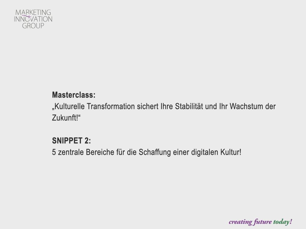 "Snippet 2 Masterclass ""Kulturelle Transformation"""