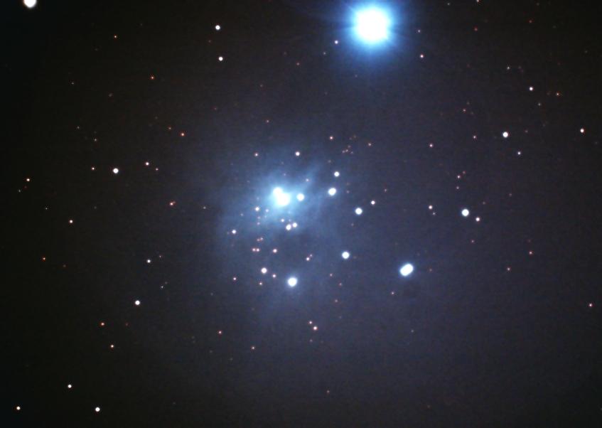 IC348 IC1985
