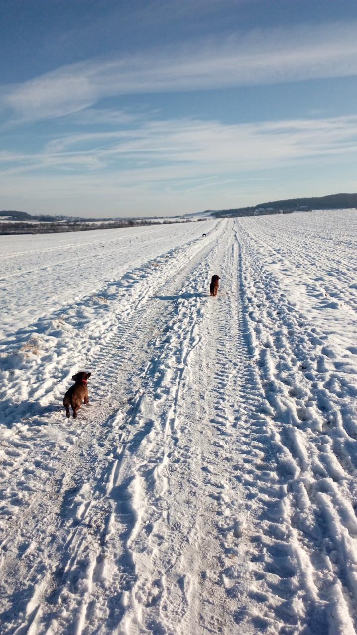 ... was für eine traumhafte Winterlandschaft, beneidenswert.