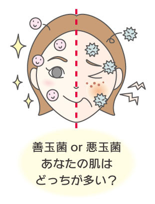 善玉菌or悪玉菌 あなたの肌はどっちが多い?