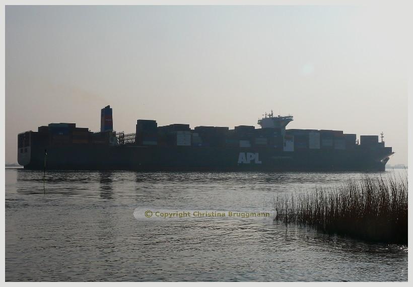 """""""APL SENTOSA"""" auf der Elbe 24.04.2015"""