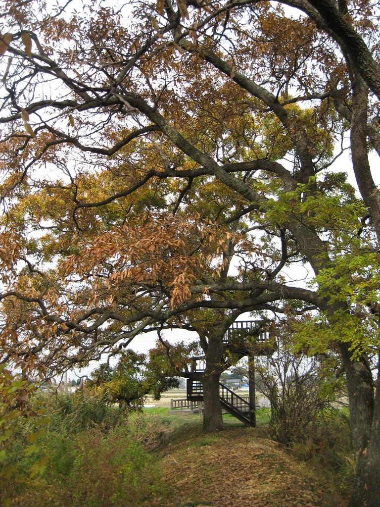「秋」 ちりじの展望台