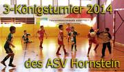 28.12.2013   Dreikönigsturnier Hornstein U7