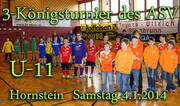 4.1.2014    U11-3-Koenigsturnier ASV Hornstein