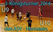 29.12.2013    Dreikönigsturnier Hornstein U9