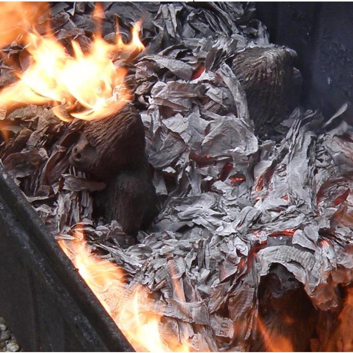 """Enfumage des gorilles pour l'oeuvre d'Annick Cammarata """"Voie de l'extinction"""""""