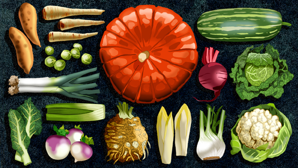 Titel: Winter-Vegetables, Kunde: Spotlight Verlag, Technik: Fineliner, Photoshop, Entstehung: 2013