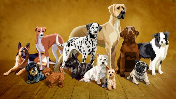Titel: Dogs, Kunde: Spotlight-Magazin, Technik: Fineliner, Photoshop, Entstehung: 2014