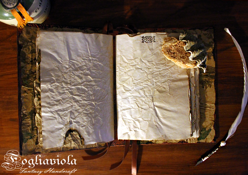 Pirate journal, an enchanted gift for him and her.