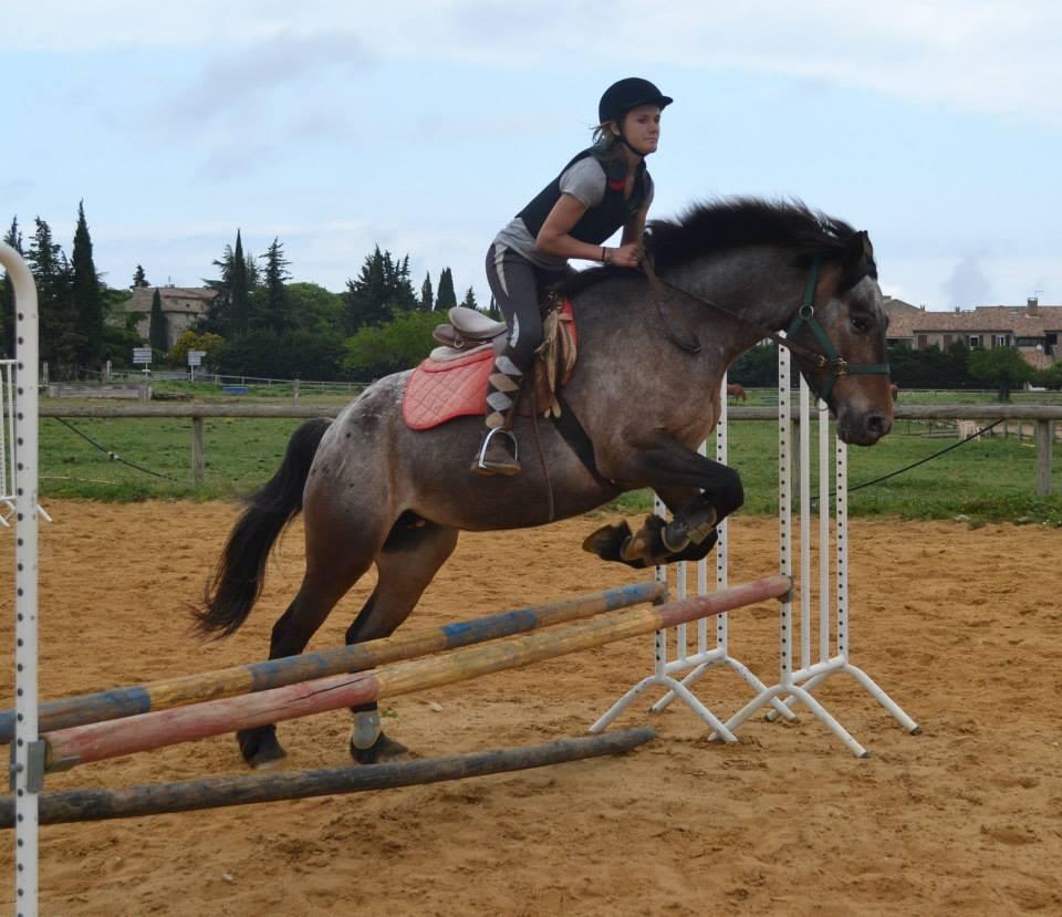 (c) Centre-equestremejannes.com