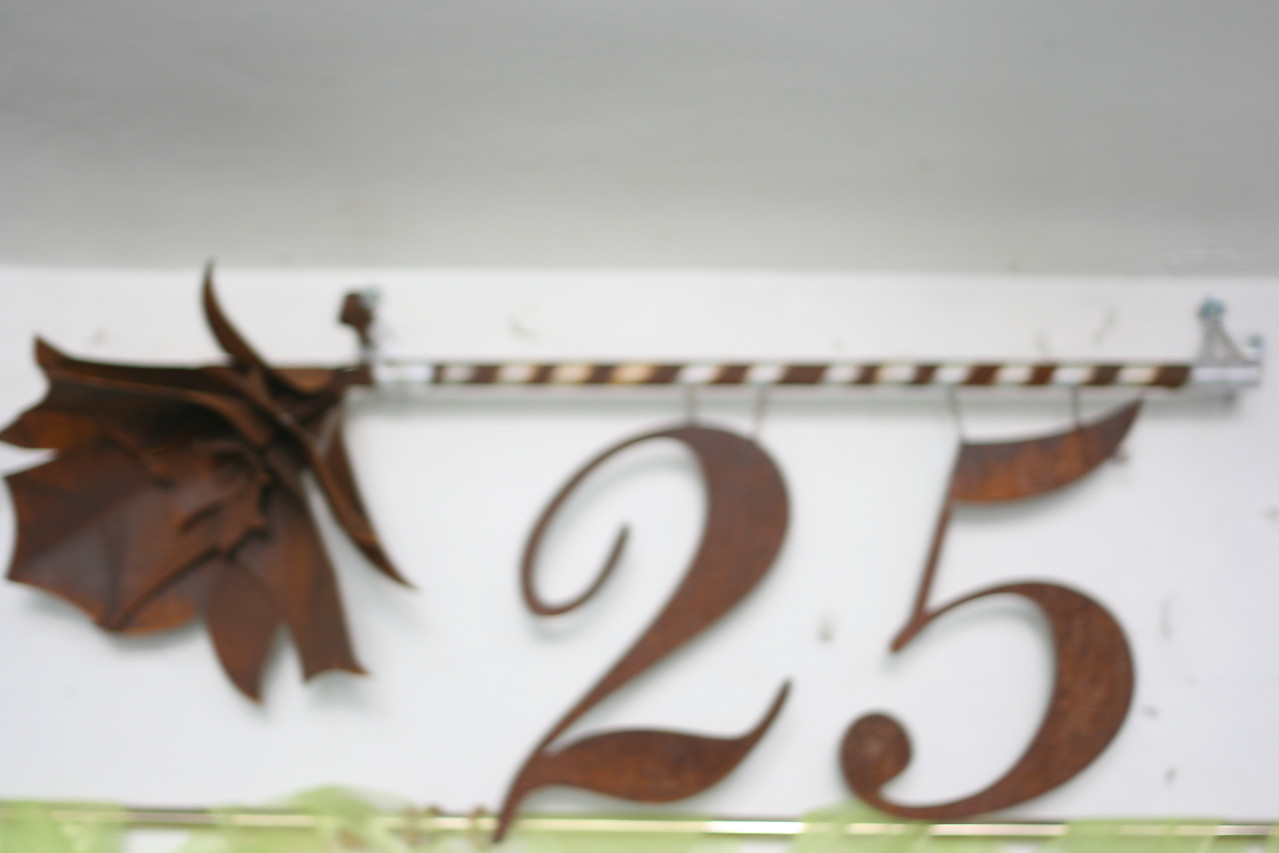 25 zur Silberhochzeit