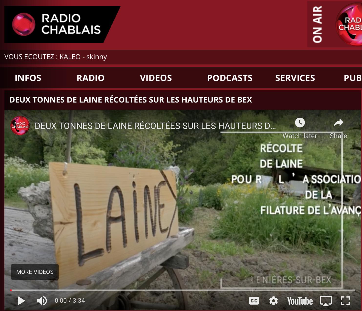 Radio Chablais - DEUX TONNES DE LAINE RÉCOLTÉES SUR LES HAUTEURS DE BEX