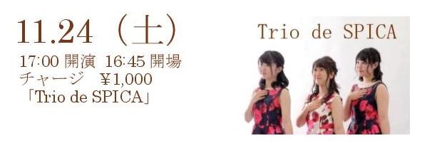 11/24(土)trio de spica