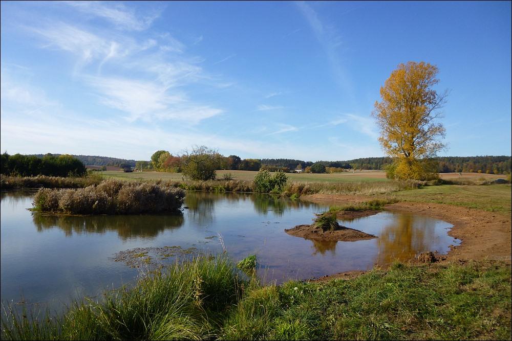 Um zwei Brutinseln und eine Flachwasserzone erweiterter NABU-Teich
