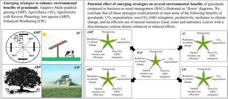 A review of transformative strategies for climate mitigation by grasslands