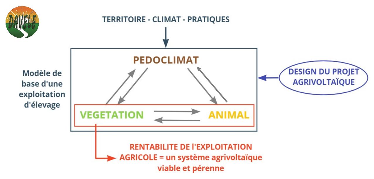 Microclimat dans un système agrivoltaïque