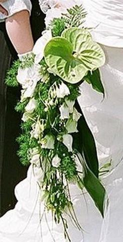 BCM2-Le Bouquet Chute de la Mariée