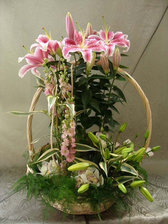 CPI-3: Lis en pot avec fleurs coupées dans vannerie