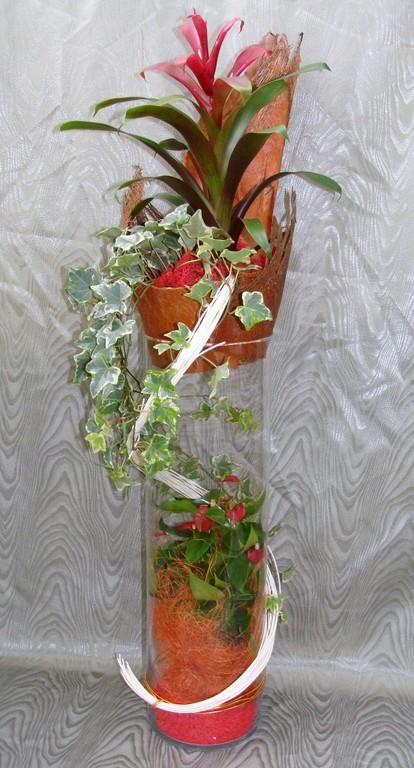 CPI-La Composition de Plantes Intérieures