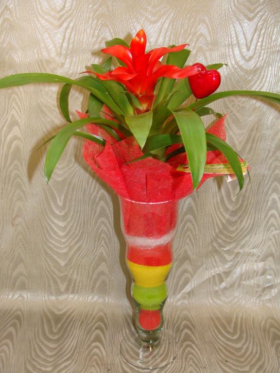 CPI-6: Guzmania dans verrerie avec sable de couleur