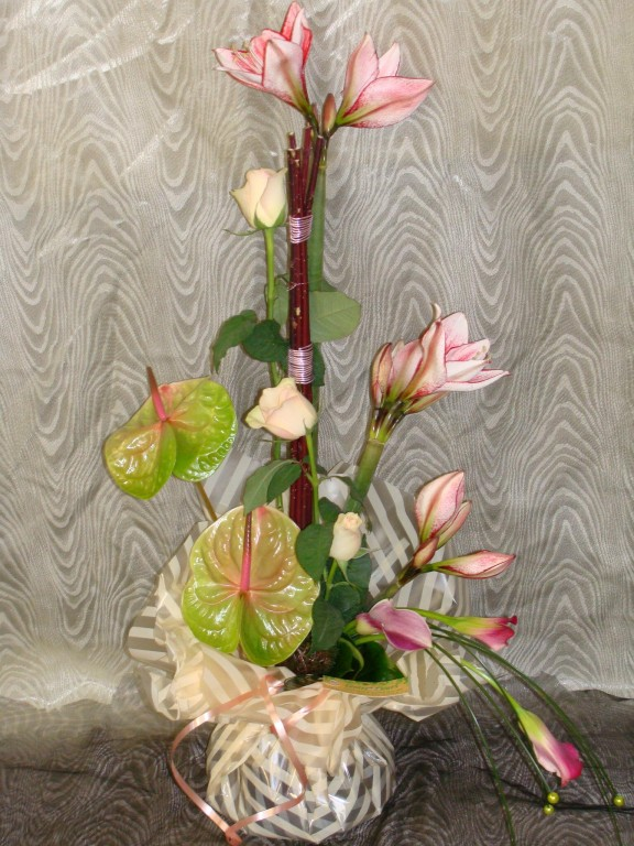 BE2-anthurium vert, rose rose, amaryllis strié rose, arum rose,