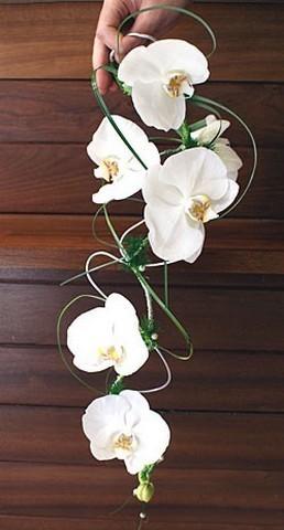 BCM15-Le Bouquet Chute de la Mariée
