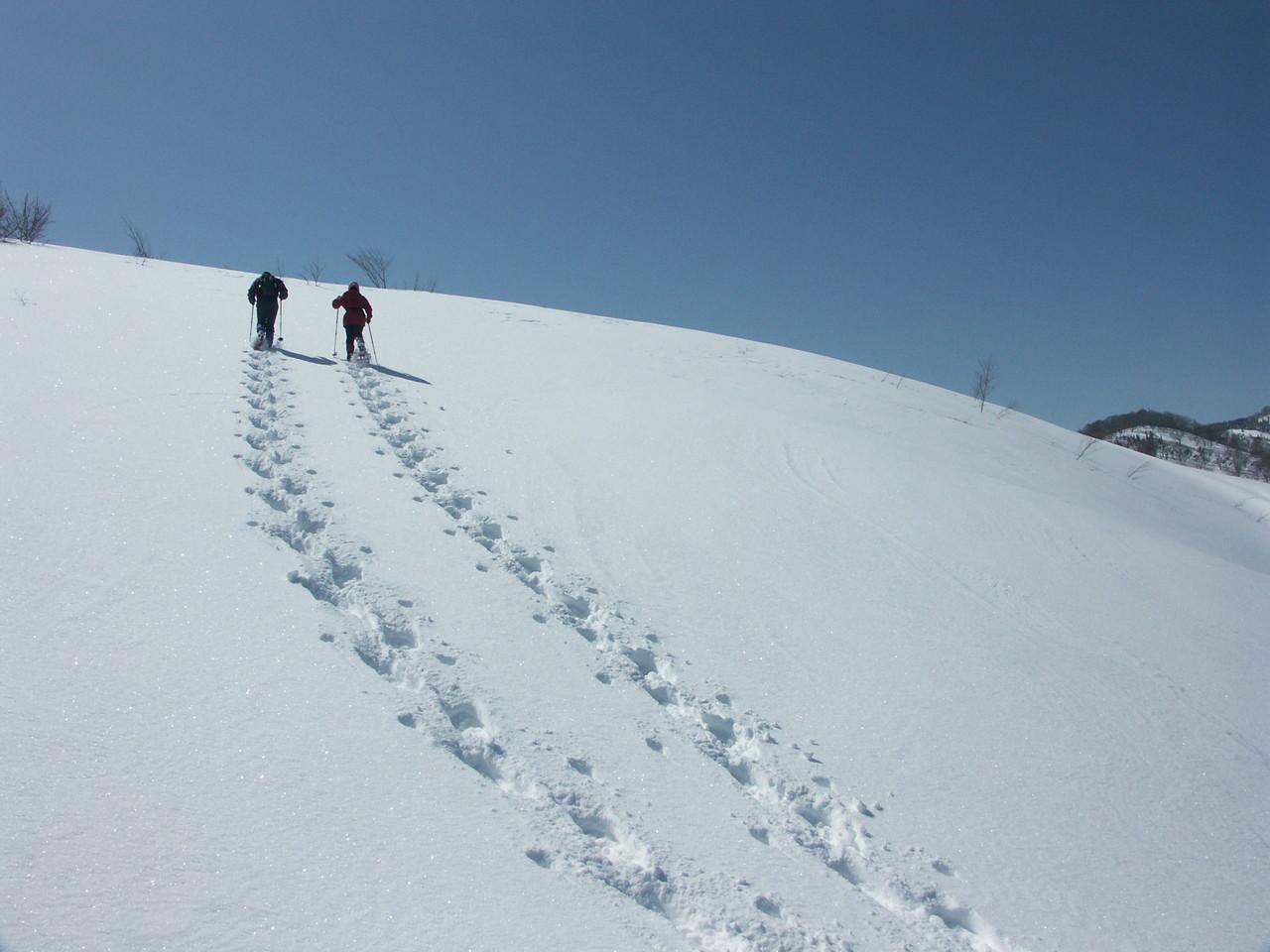 Iiyama [Snow shoes Tour]