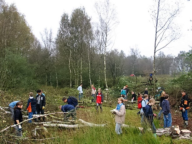 Auch große Bäume werden von den Schülern mit den Bügelsägen gefällt