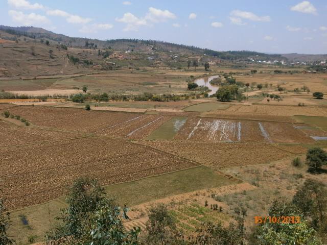 Paysage du Haut plateau