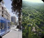 ¿Dónde prefieres vivir, la ciudad o el campo?