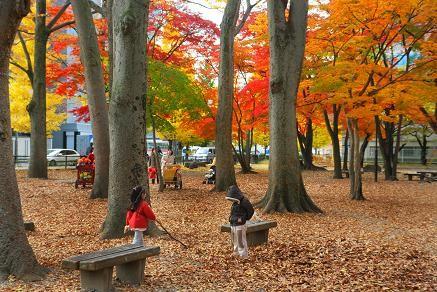 近くの勝山公園は、紅葉真っ盛り!!