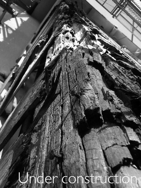 工事中:外壁漏水で木が濡れて蟻害発生の痕(通柱)