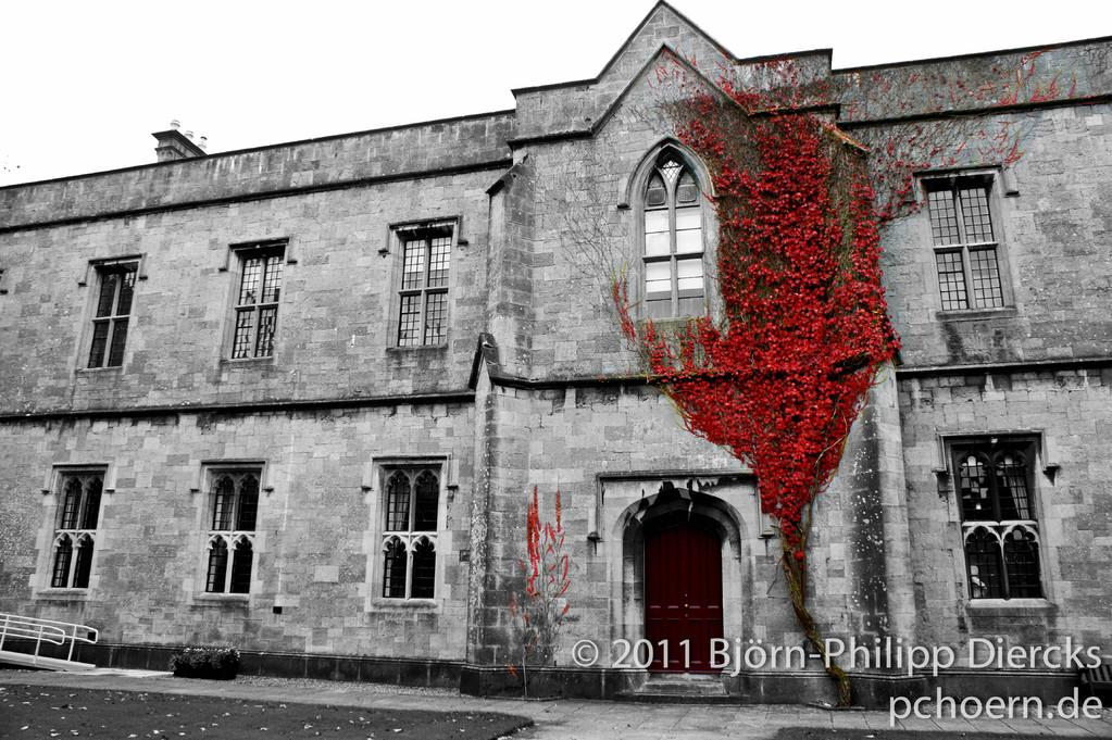 Universität Galway Irland