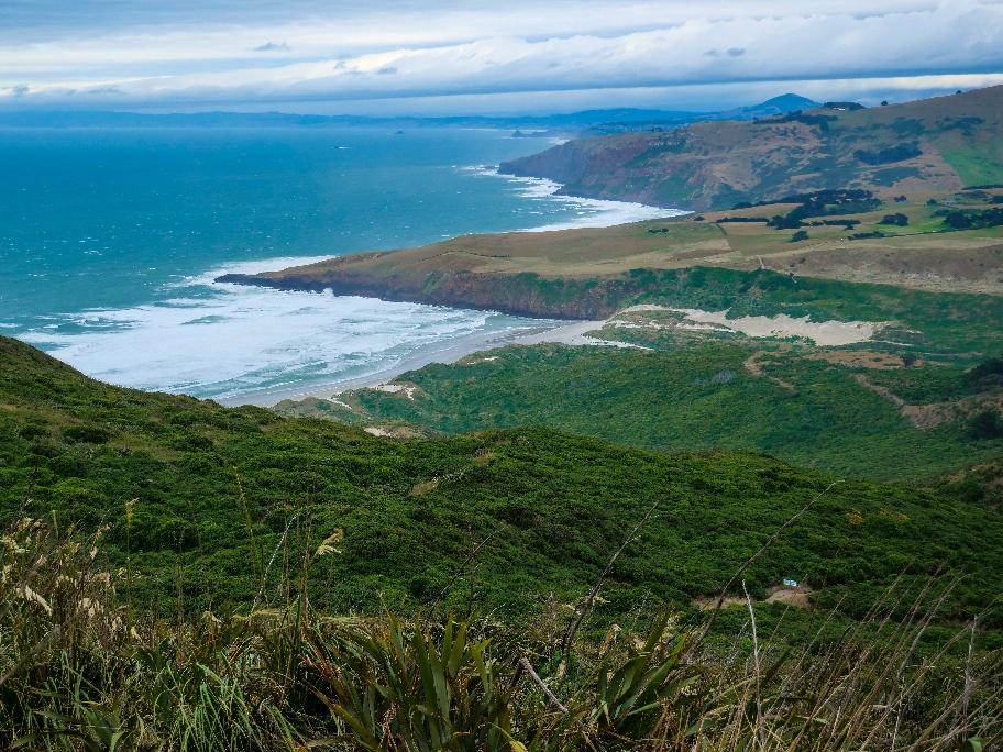Die schöne Küste auf der Otago Halbinsel