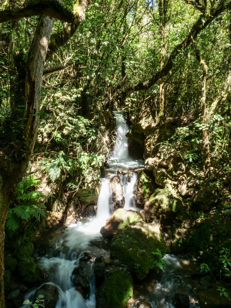 An einem kleinen Wasserfall ging es auch vorbei. So langsam finde ich gefallen an Wasserfallfotos