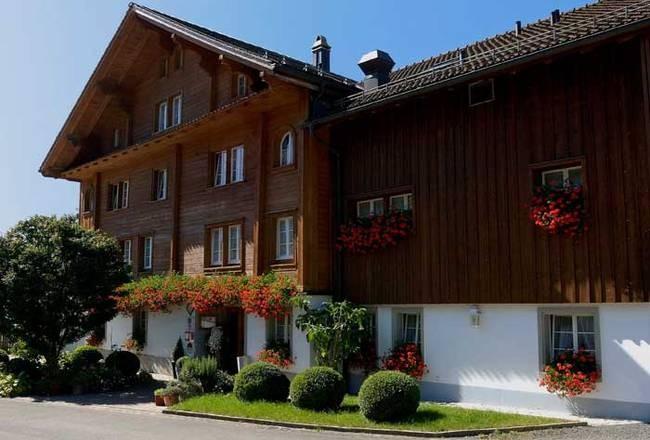 Restaurant Adelboden, Steinen