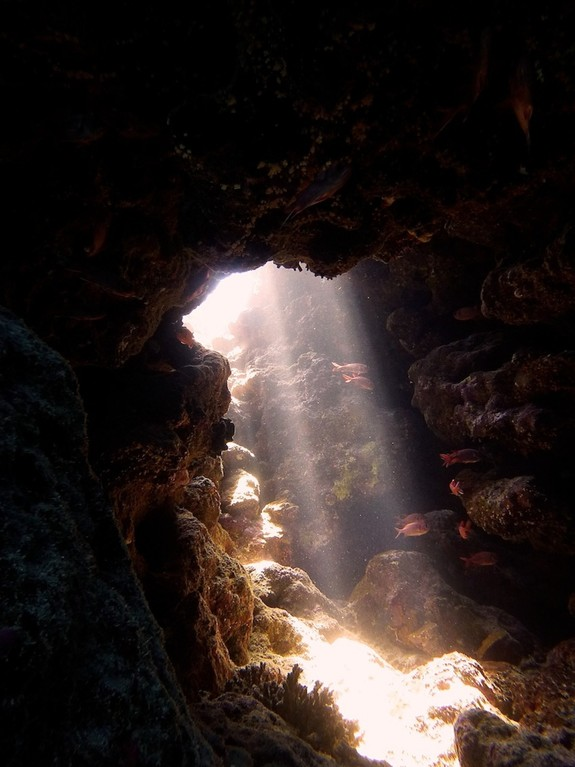 Grotte ( grotto )