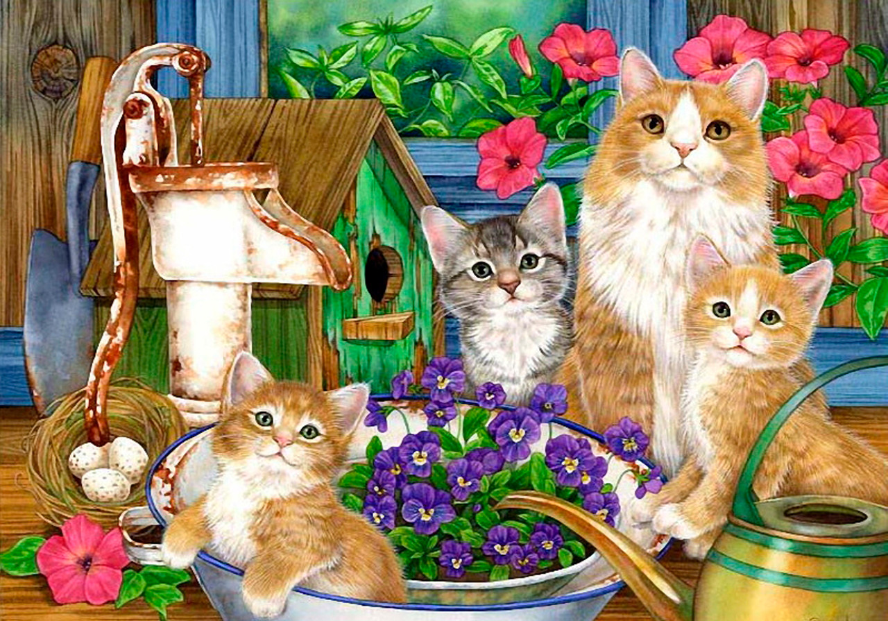 Город, открытка кошка с котенком