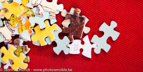 La trame d'un puzzle selon la marque
