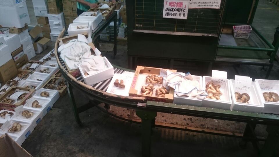 中国産松茸