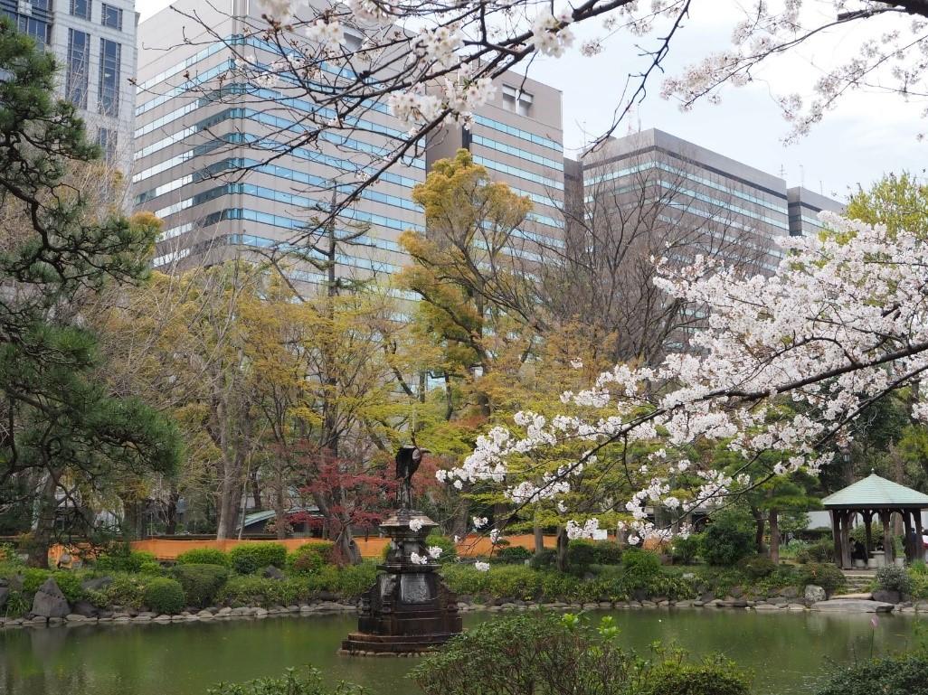 【日比谷公園】高層ビルと桜がひとつの構図で撮れる都心のオアシス