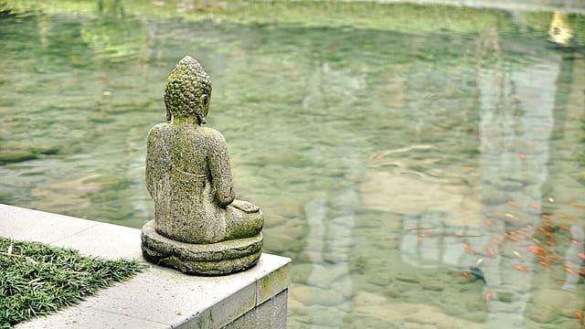 """S'asseoir, se poser, accepter, réfléchir, respirer, observer le monde """"comme si c'était la première fois"""""""