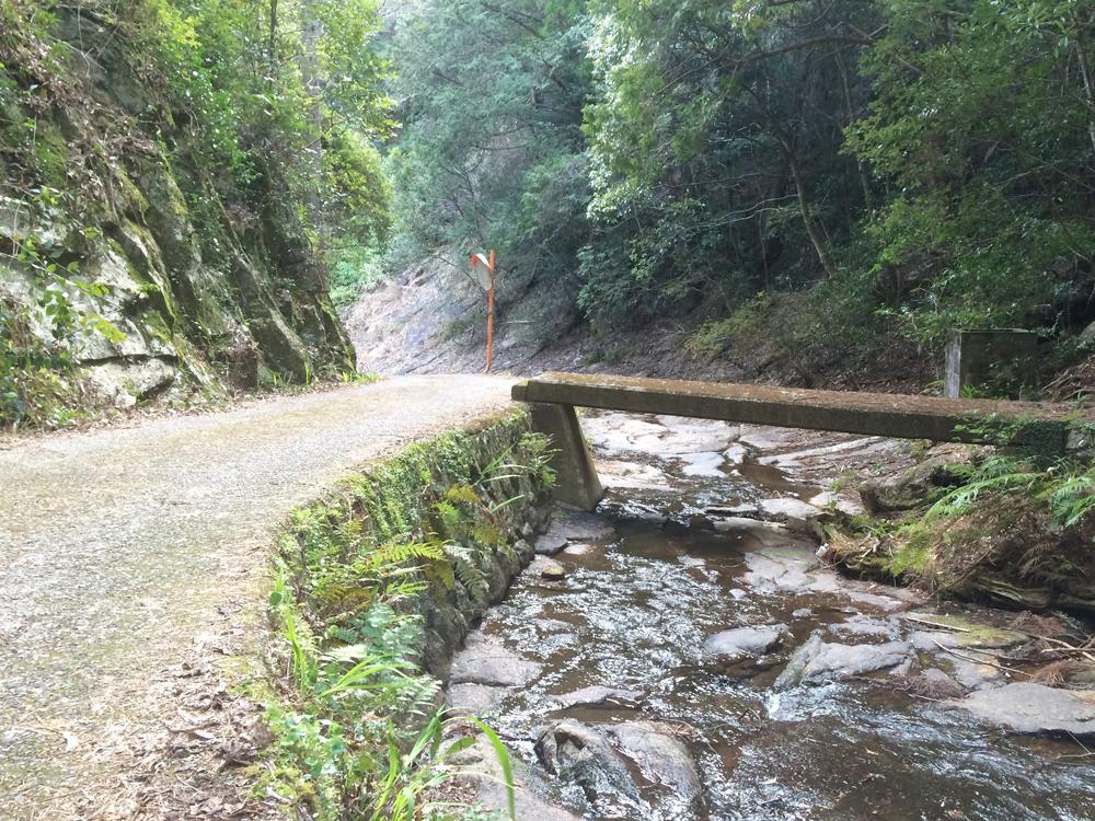近くには川が流れる林道もあります。