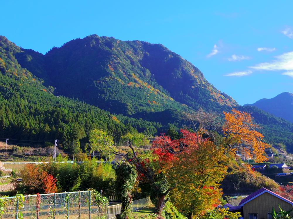 山並みの綺麗な地区です。