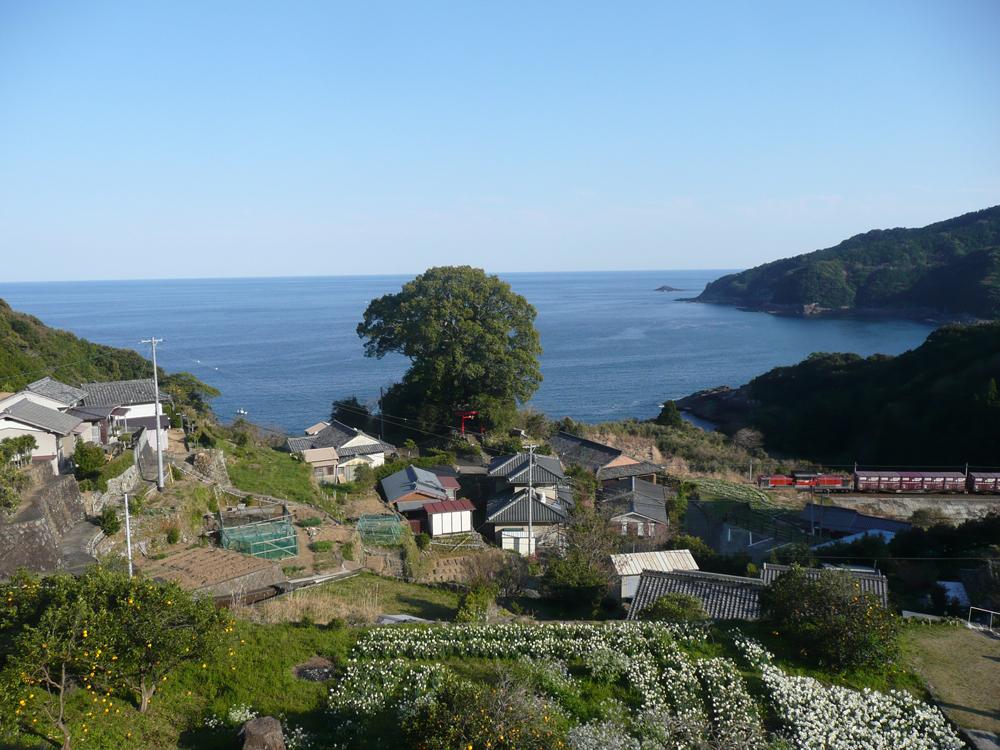 波田須町の景色です。温暖で穏やかな場所です。