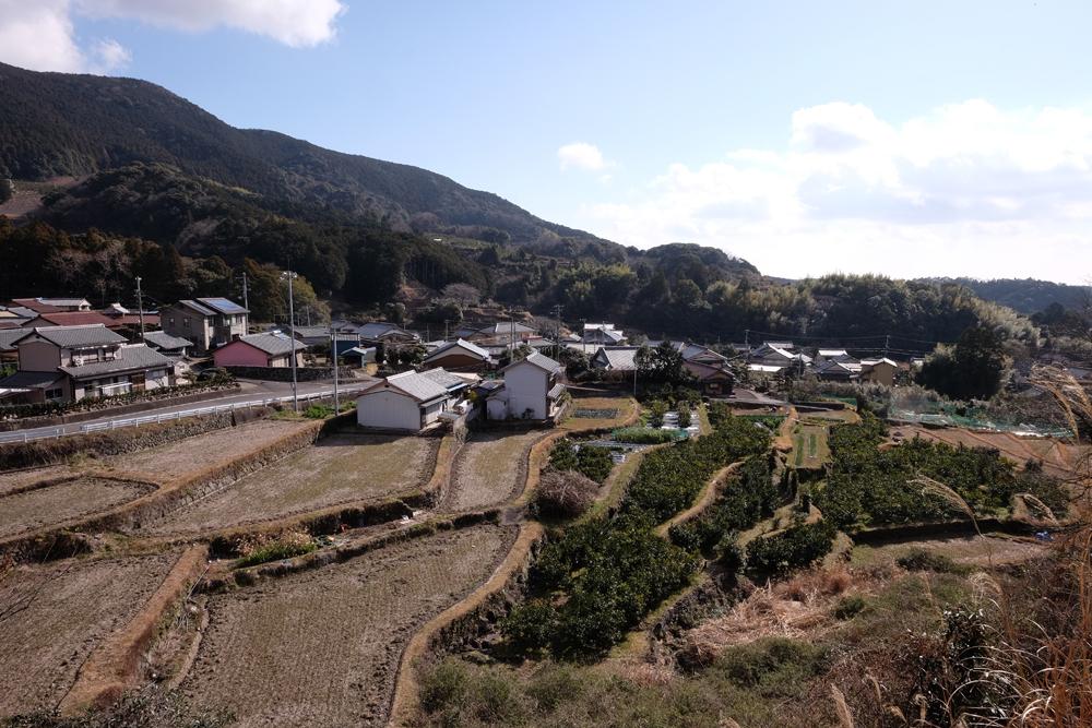 金山町は高台にあり、みかん畑が多く広がっています。新興住宅街としても人気の地区です。