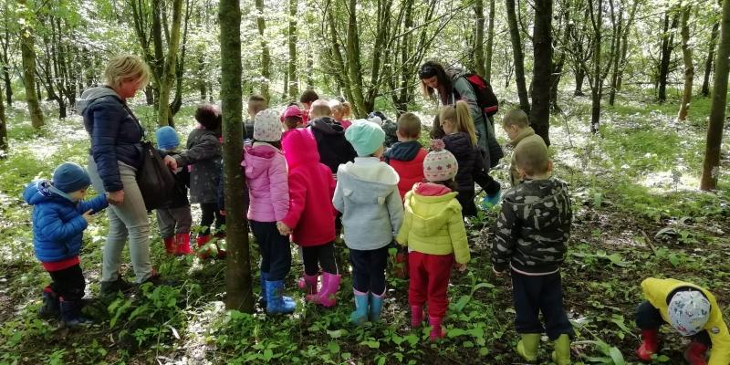 Visita guidata nel bosco per una scuola materna - Vigheffio (PR)
