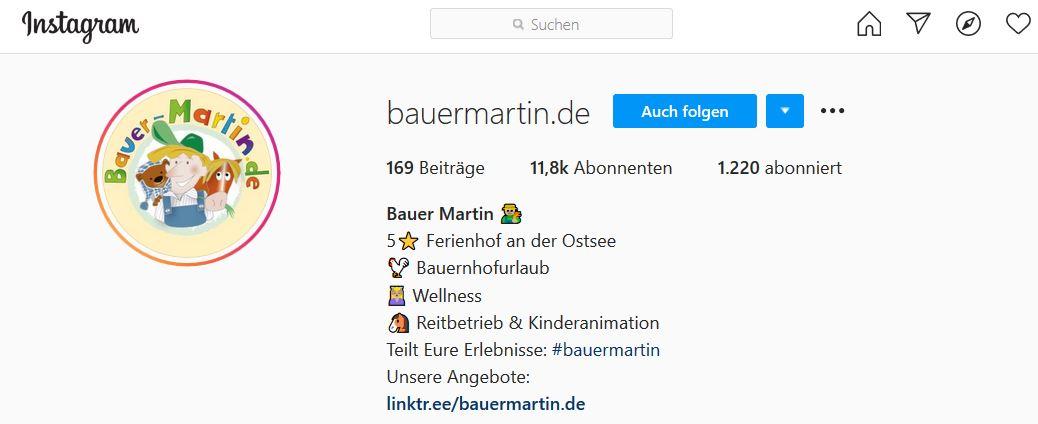 Das gehört in Ihre Instagram Profilbeschreibung!